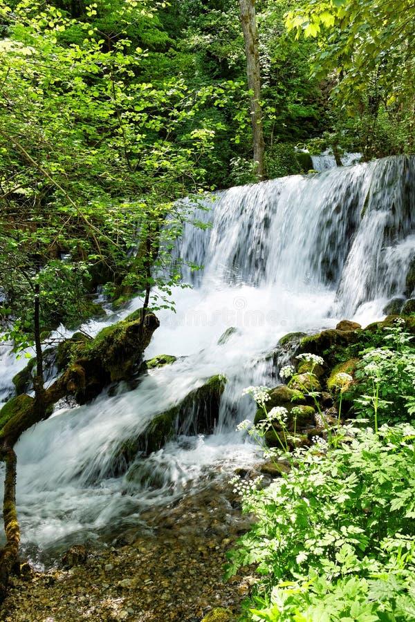 河Vrelo的瀑布 库存图片