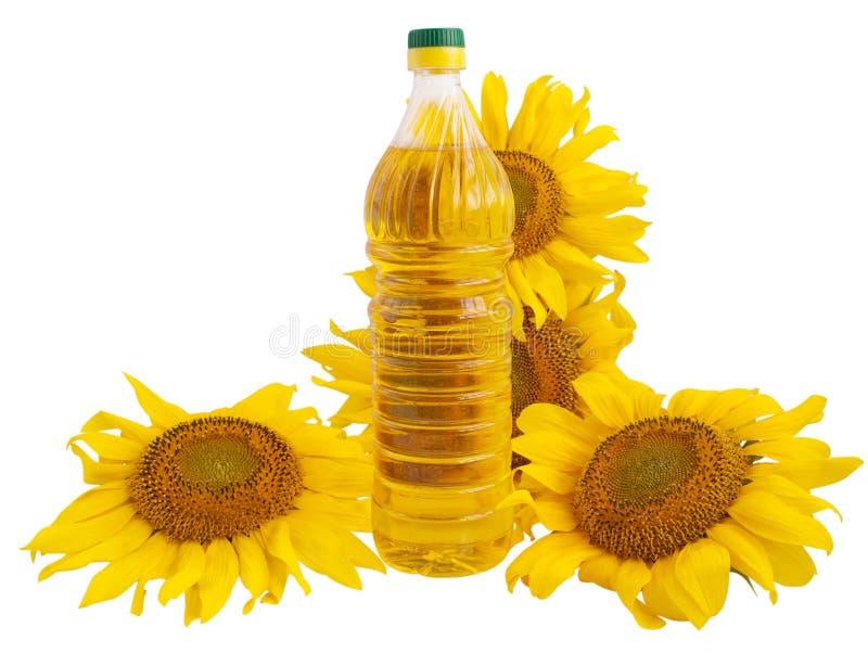 油向日葵 免版税库存照片