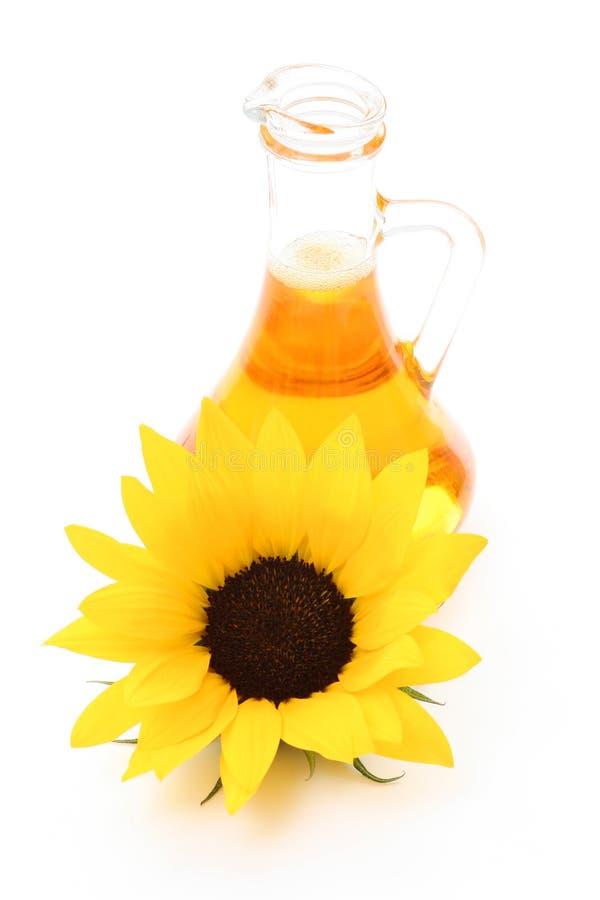 油向日葵 库存照片