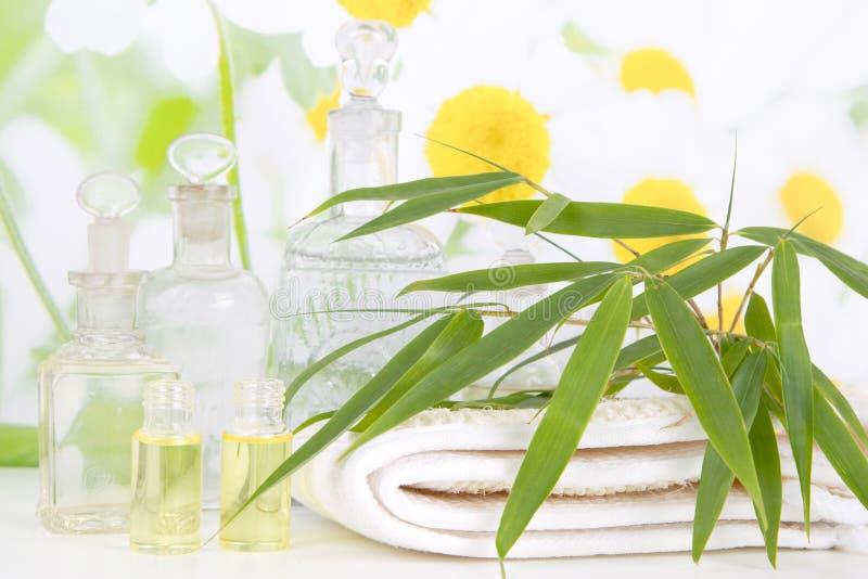 油和春黄菊与毛巾 库存图片