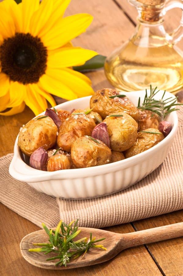 油土豆向日葵 免版税库存图片