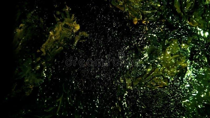油漆污迹特写镜头帆布的表面上的 绿色,黄色,淡黄色的斑点 免版税库存图片