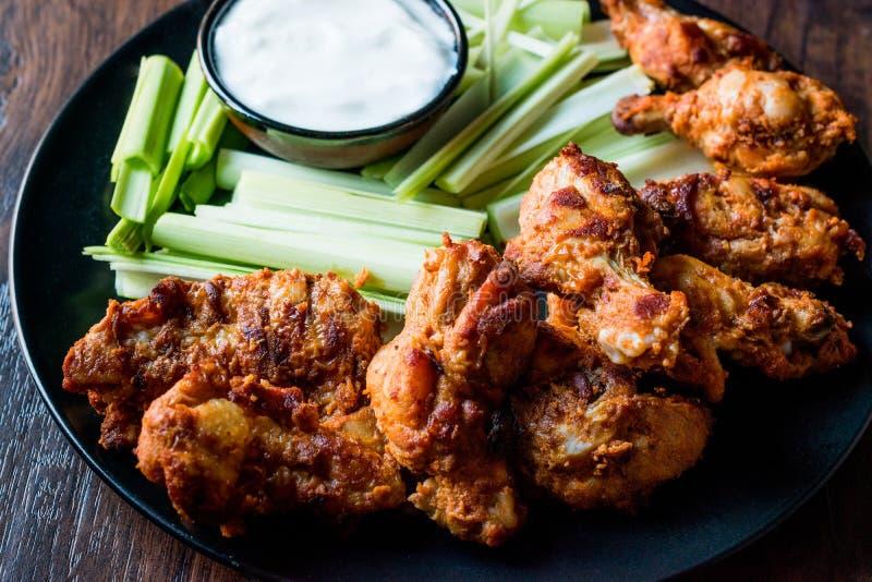 油炸鸡翅用垂度调味汁和韭葱 免版税库存照片