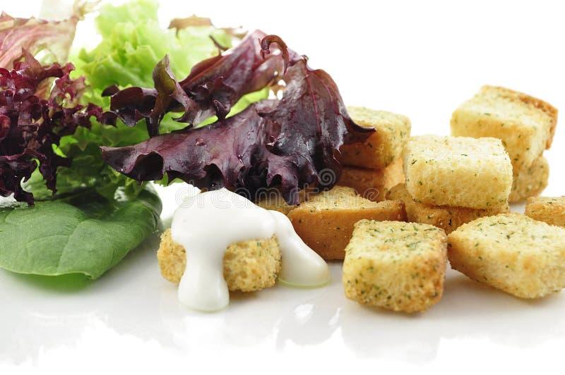 油煎方型小面包片叶子沙拉 库存图片