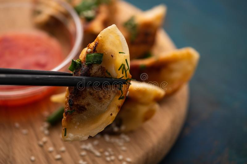 油煎的中国饺子叫Gyoza,种类亚洲食物 免版税库存图片