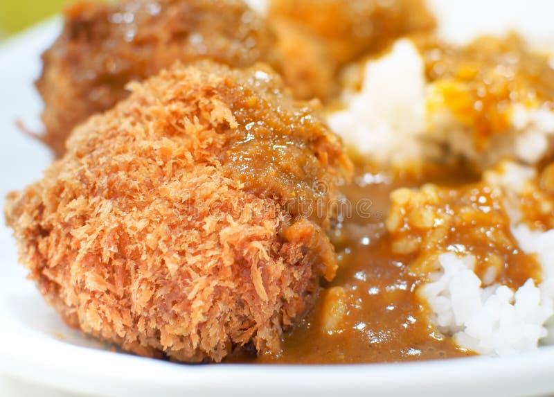 油煎的猪肉tonkatsu或用日本咖喱饭 免版税图库摄影