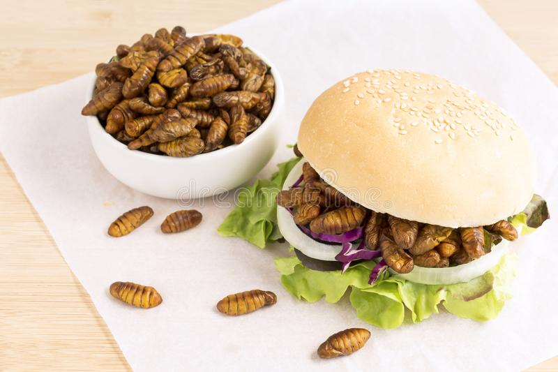 油煎的蠕虫昆虫或蝶蛹桑蚕吃的当食品项目在面包汉堡与菜在木桌,它上是好来源 库存图片