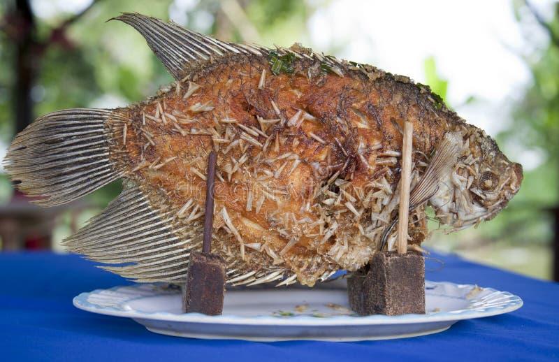 油煎的鱼 图库摄影