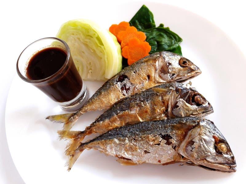 油煎的鲭鱼酱调味汁虾 免版税库存图片