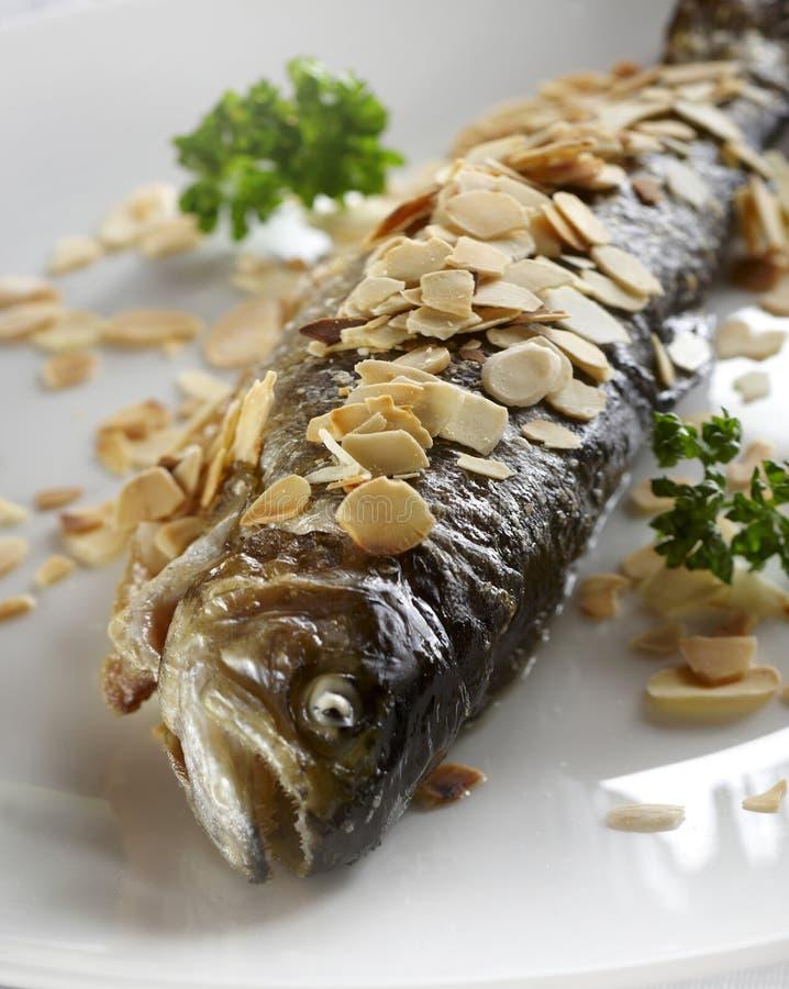 油煎的鳟鱼 库存照片