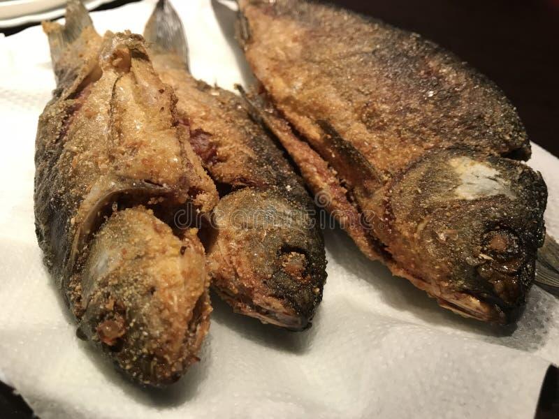 油煎鱼为食物准备 免版税库存照片