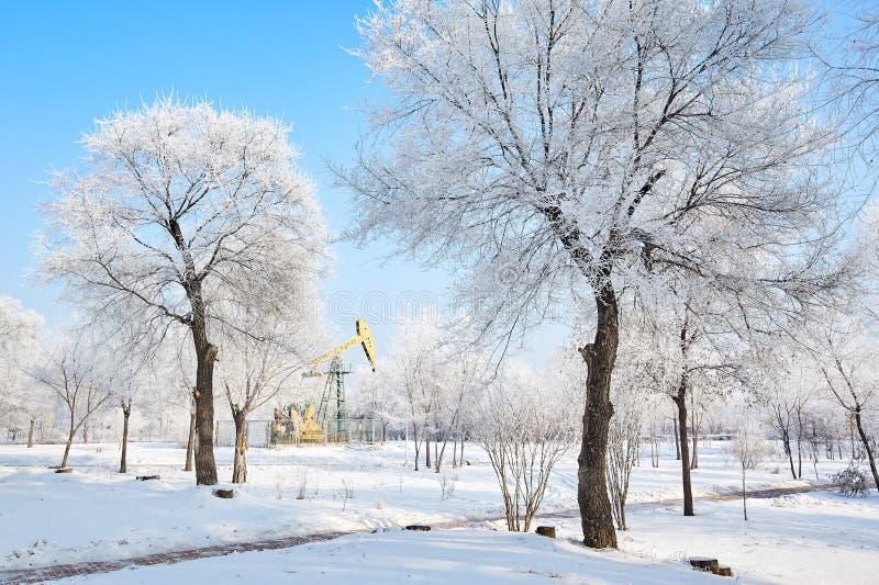 油脉动单元和软的霜和雪环境美化 免版税图库摄影