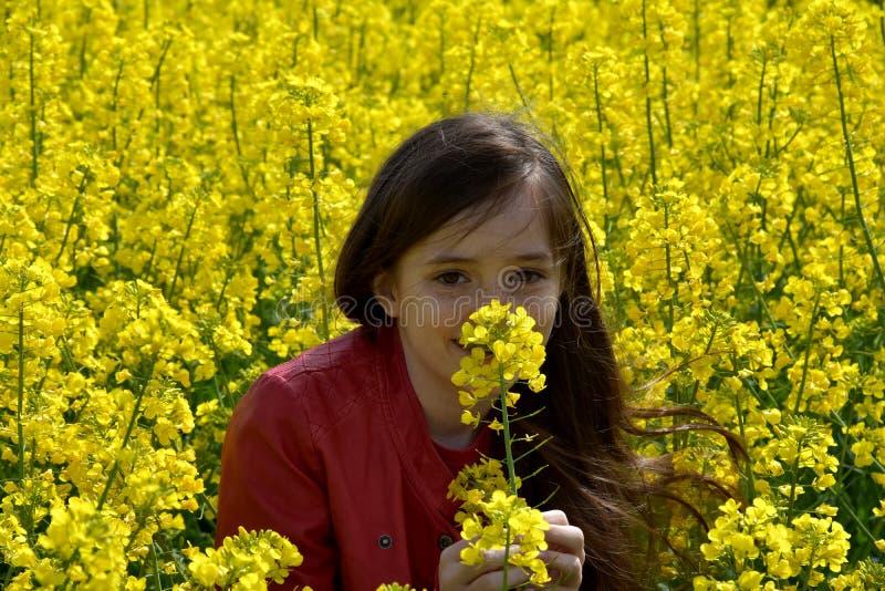 油菜领域的女孩 免版税库存照片