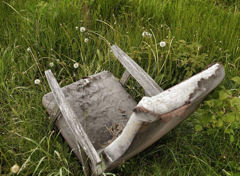 沼地绿色草本老扶手椅子 免版税图库摄影