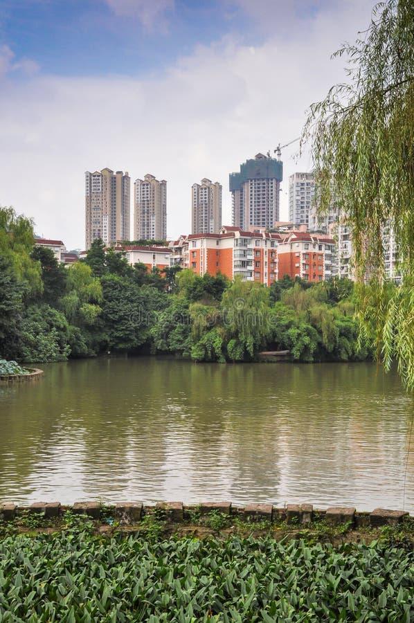 沼泽地公园和现代城市大厦 库存图片