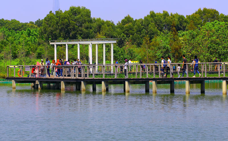 沼泽地公园,香港 免版税库存照片