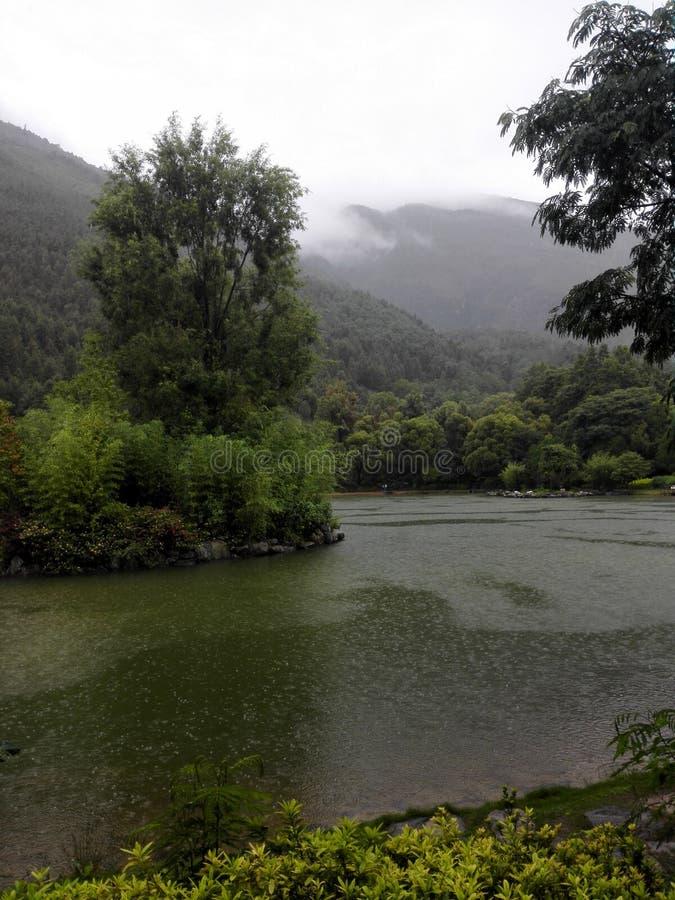 沼泽地山河 库存图片