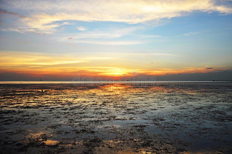 沼泽地沿海的暮色看法 图库摄影