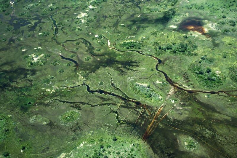 沼泽地鸟瞰图从直升机的 库存照片