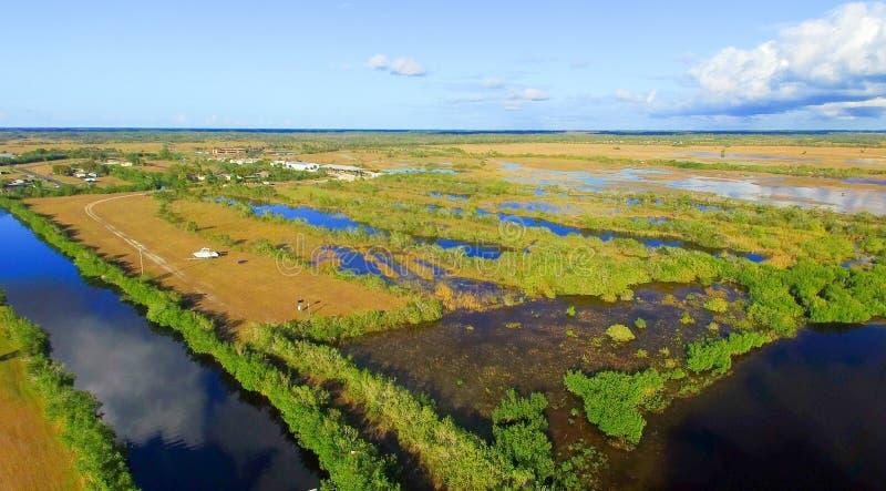 沼泽地,佛罗里达全景鸟瞰图  库存照片