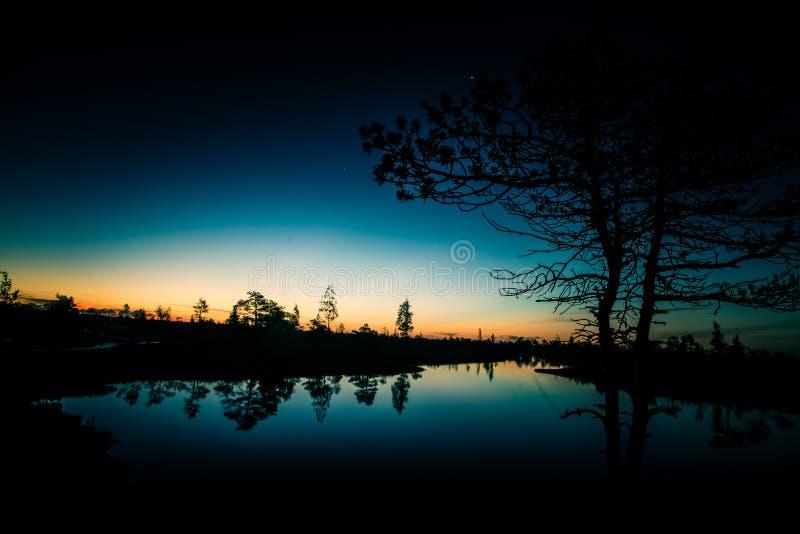 沼泽的一个美好,五颜六色,艺术性的风景日出的 免版税库存图片