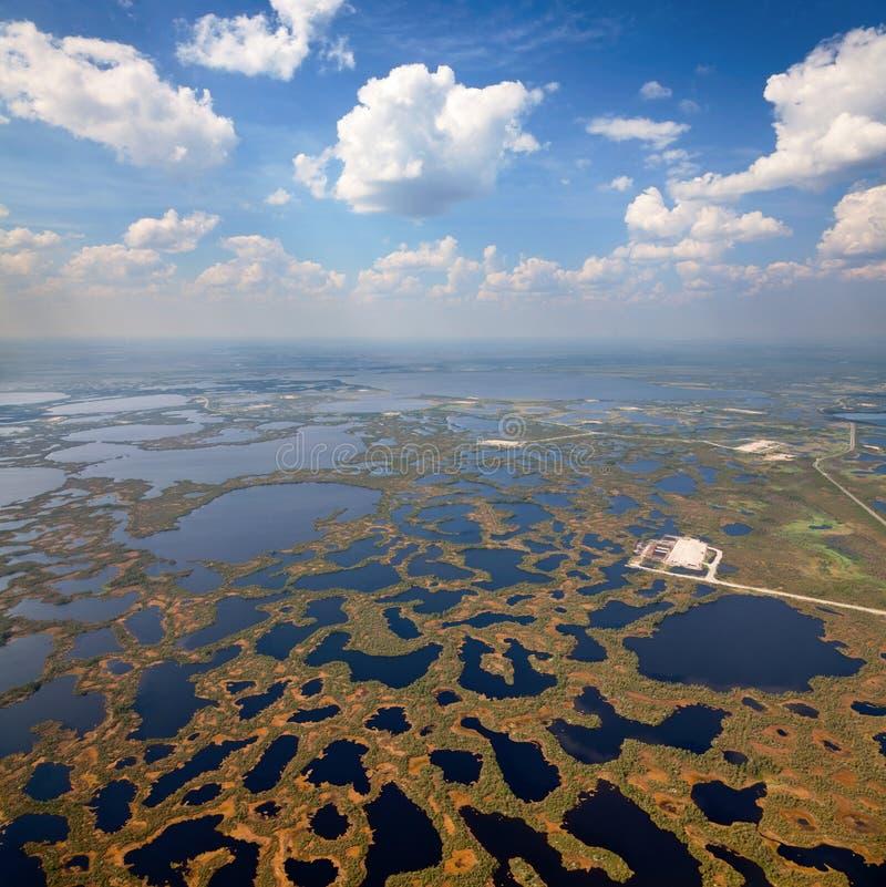 沼泽的,顶视图油田 免版税库存图片