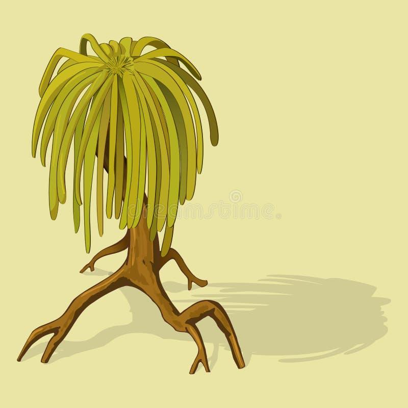 沼泽美洲红树树 库存例证