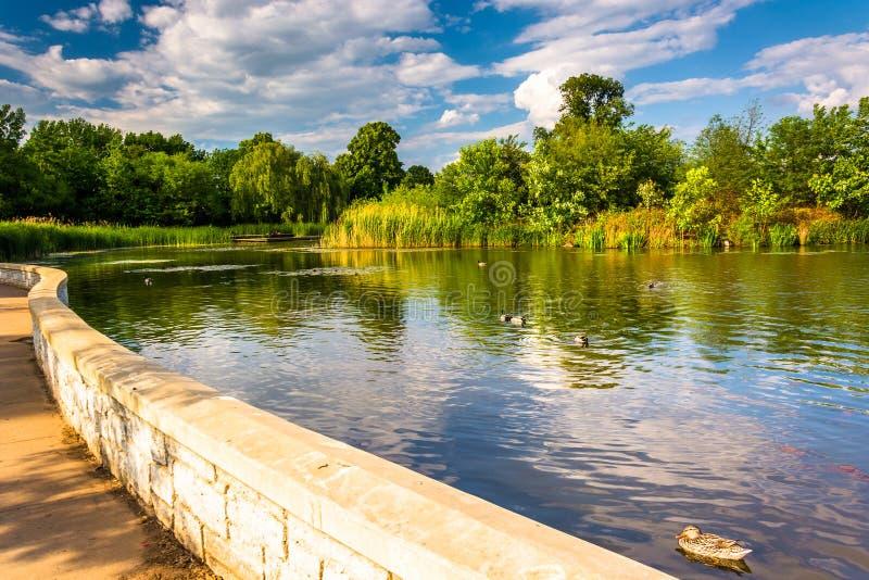 沿一个池塘的走道特森公园的,巴尔的摩,马里兰 库存照片