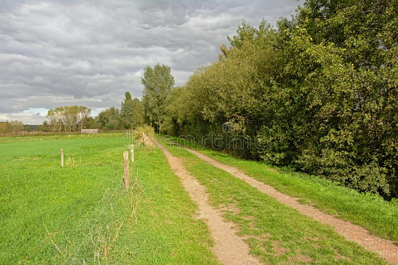 沿一个草甸的土路在一阴天在佛兰芒乡下 免版税图库摄影