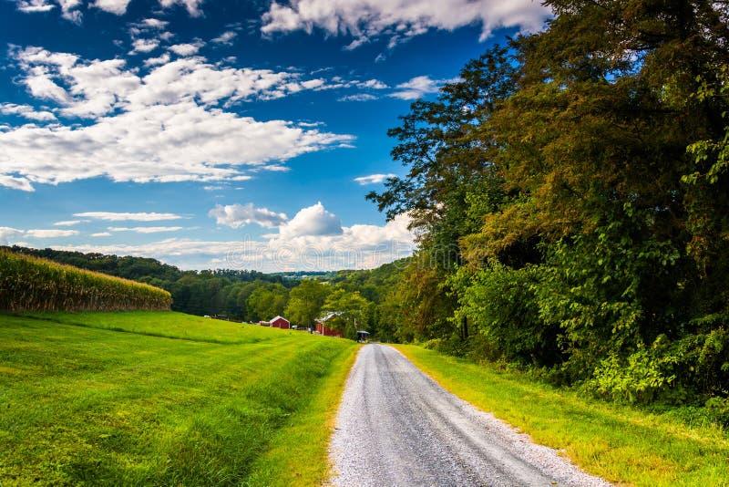 沿一条乡下公路在发怒路附近,宾夕法尼亚的农田 库存照片