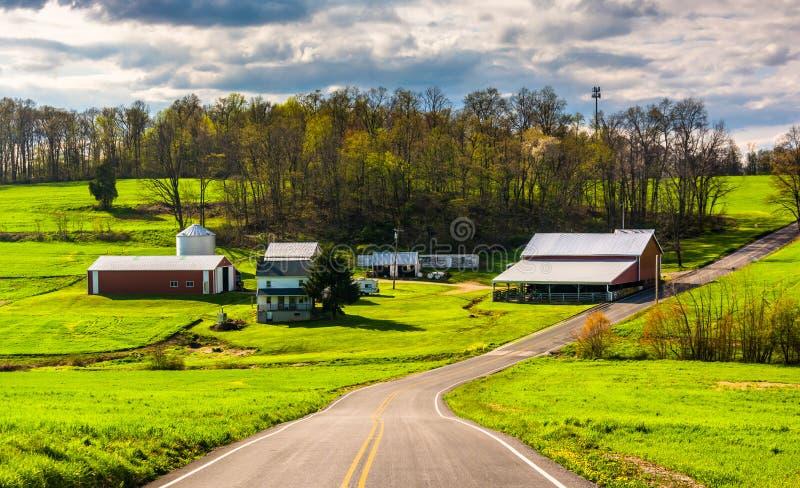 沿一条乡下公路种田在农村约克县,宾夕法尼亚 库存照片