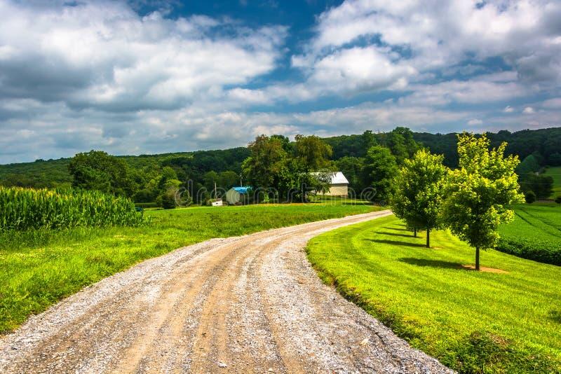 沿一条土路的农田在农村卡洛尔县,马里兰 图库摄影