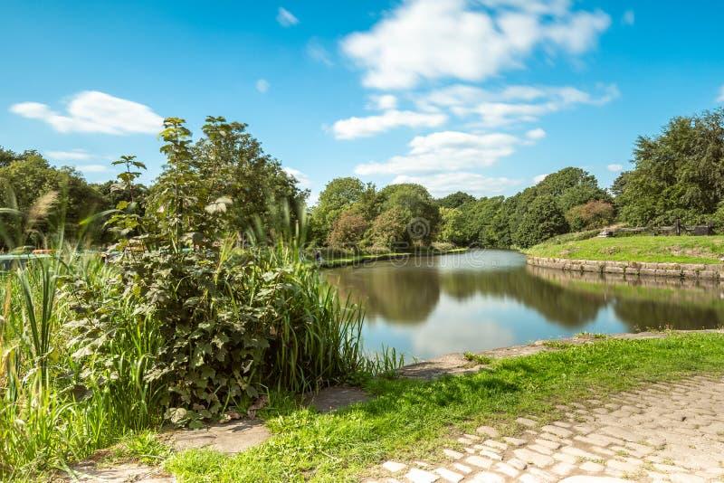 沿利兹利物浦运河的灌木在Gathurst,在威根附近 库存照片
