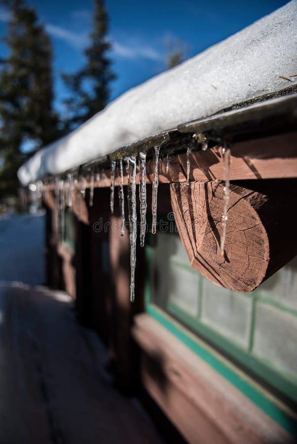 沿原木小屋Evaes的冰柱  免版税库存图片