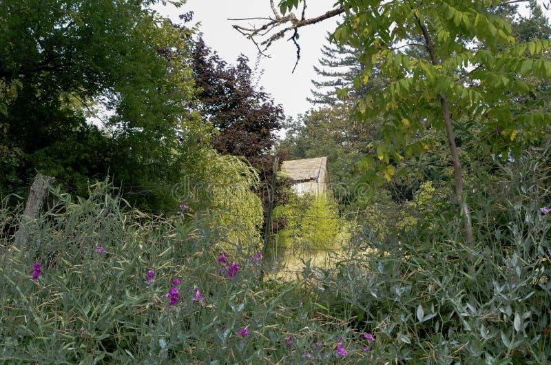 沿哥伦比亚峡谷,俄勒冈的足迹的老农厂议院 免版税库存照片