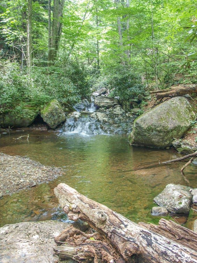 沿客舱小河足迹的小瀑布在Grayson高地 库存图片