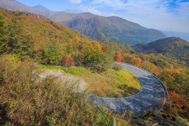 沿山的路与转动颜色-日光,日本的叶子 免版税库存图片
