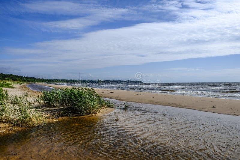 沿岸航行波罗地,爱沙尼亚,欧洲,节略 库存照片