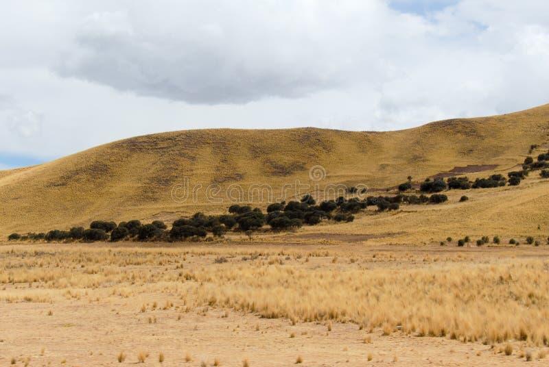 沿库斯科普诺路的看法,秘鲁 库存照片