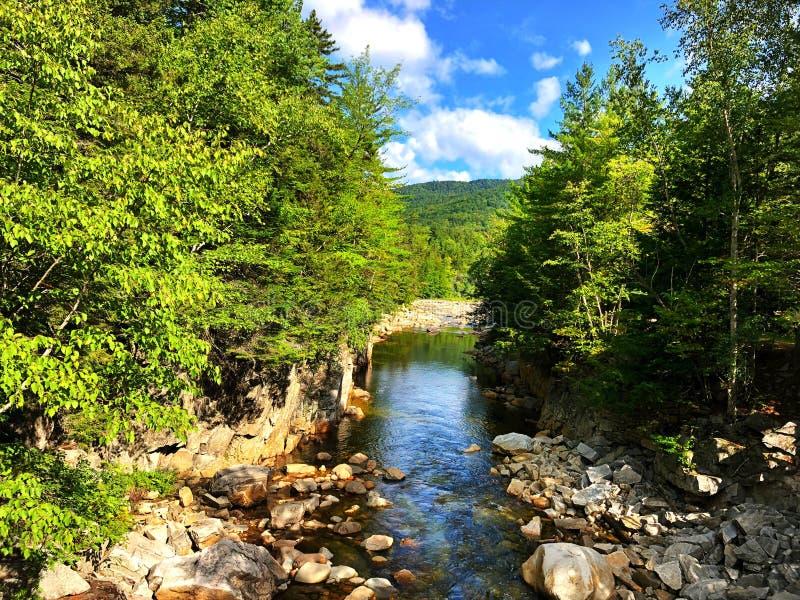 沿快速河的岩石峡谷 库存照片
