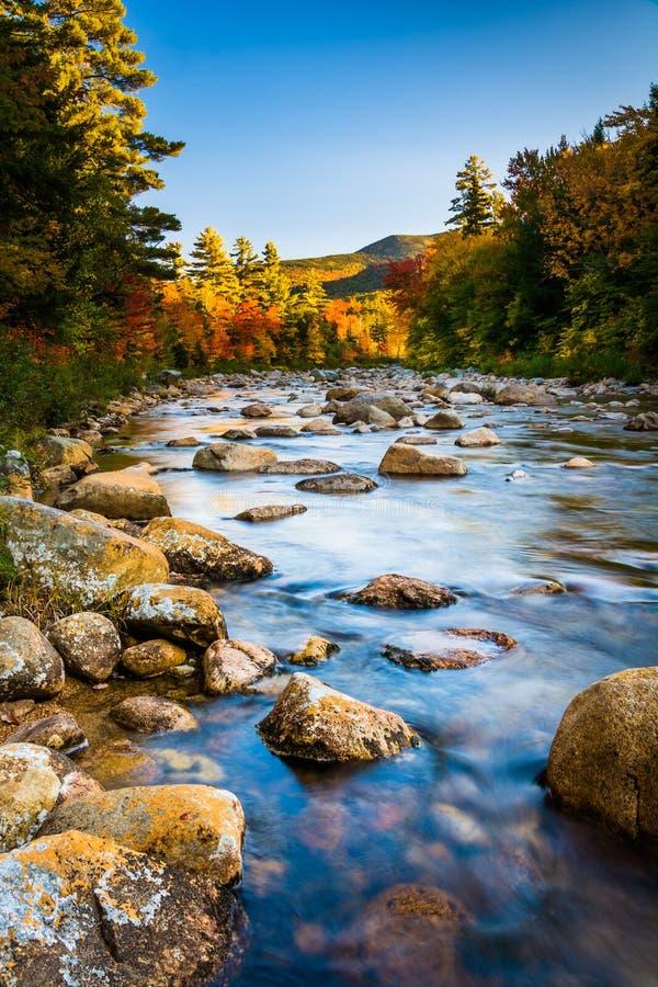沿快速河的秋天颜色,沿Kancamagus高速公路 免版税库存照片
