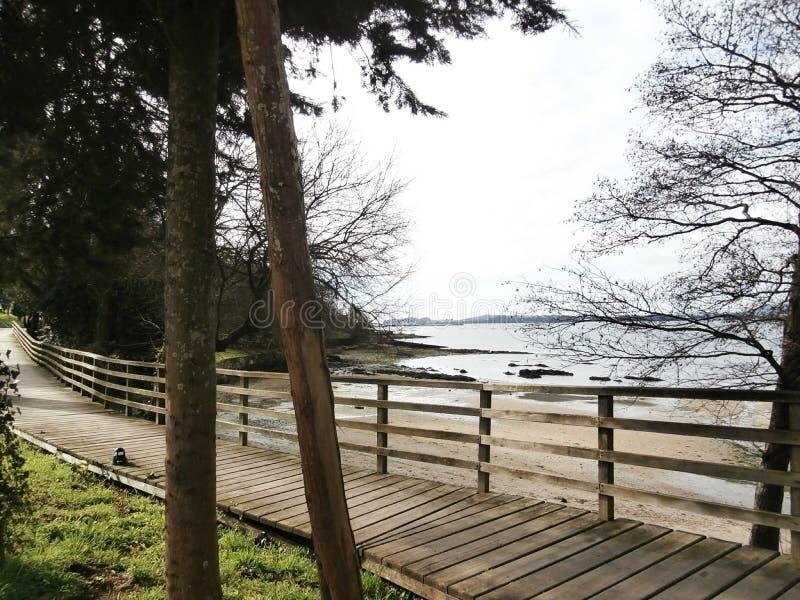 沿散步的镇静步行 海滩看见的,坐的长凳 免版税库存照片