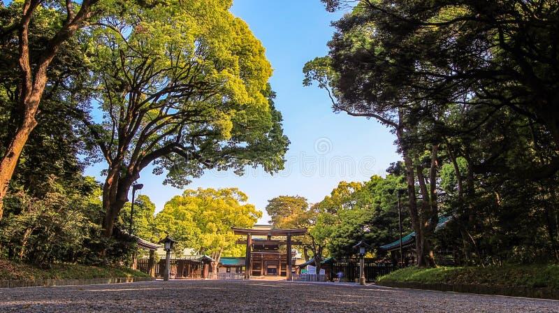 沿树木丛生的方法的Torii门对明治神宫,涩谷,东京,日本 免版税图库摄影