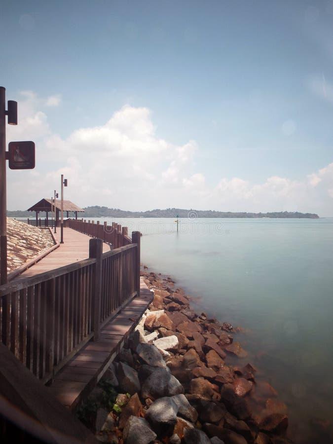 沿樟宜海滩,新加坡的木足迹 库存照片