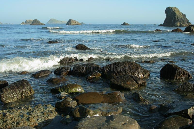 沿海俄勒冈岩石 图库摄影