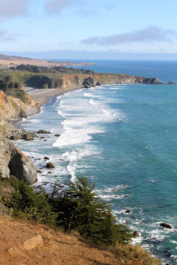 沿海岸的海浪 库存图片