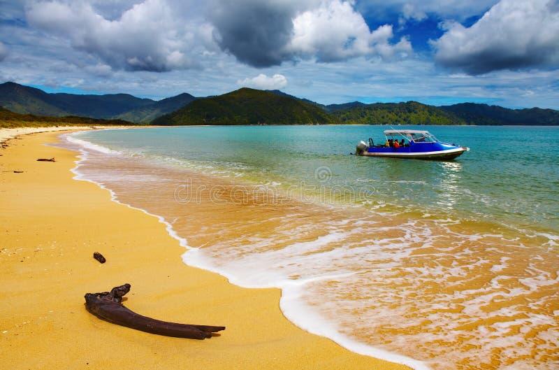 沿海新的视图西兰 免版税库存照片