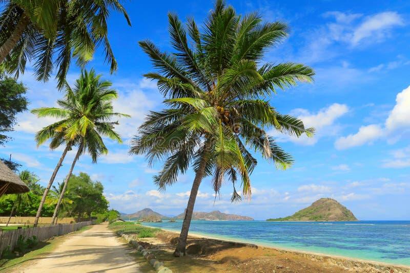沿海洋海岸的桑迪路与绿松石水、岩石和绿色棕榈树,松巴哇岛,印度尼西亚 库存照片