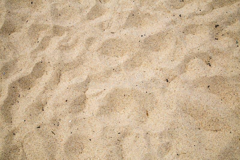 沿海海滩沙子 免版税库存图片