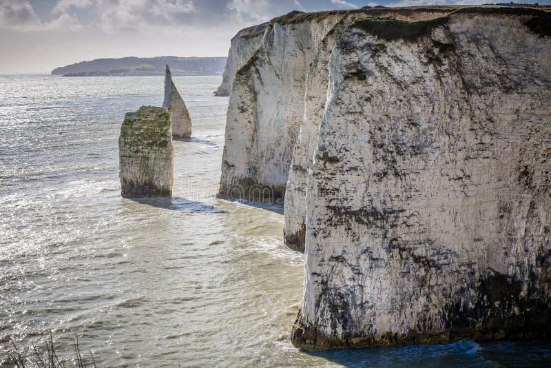 沿海白垩峭壁临近老哈里岩石, Swanage,多西特,英国 图库摄影